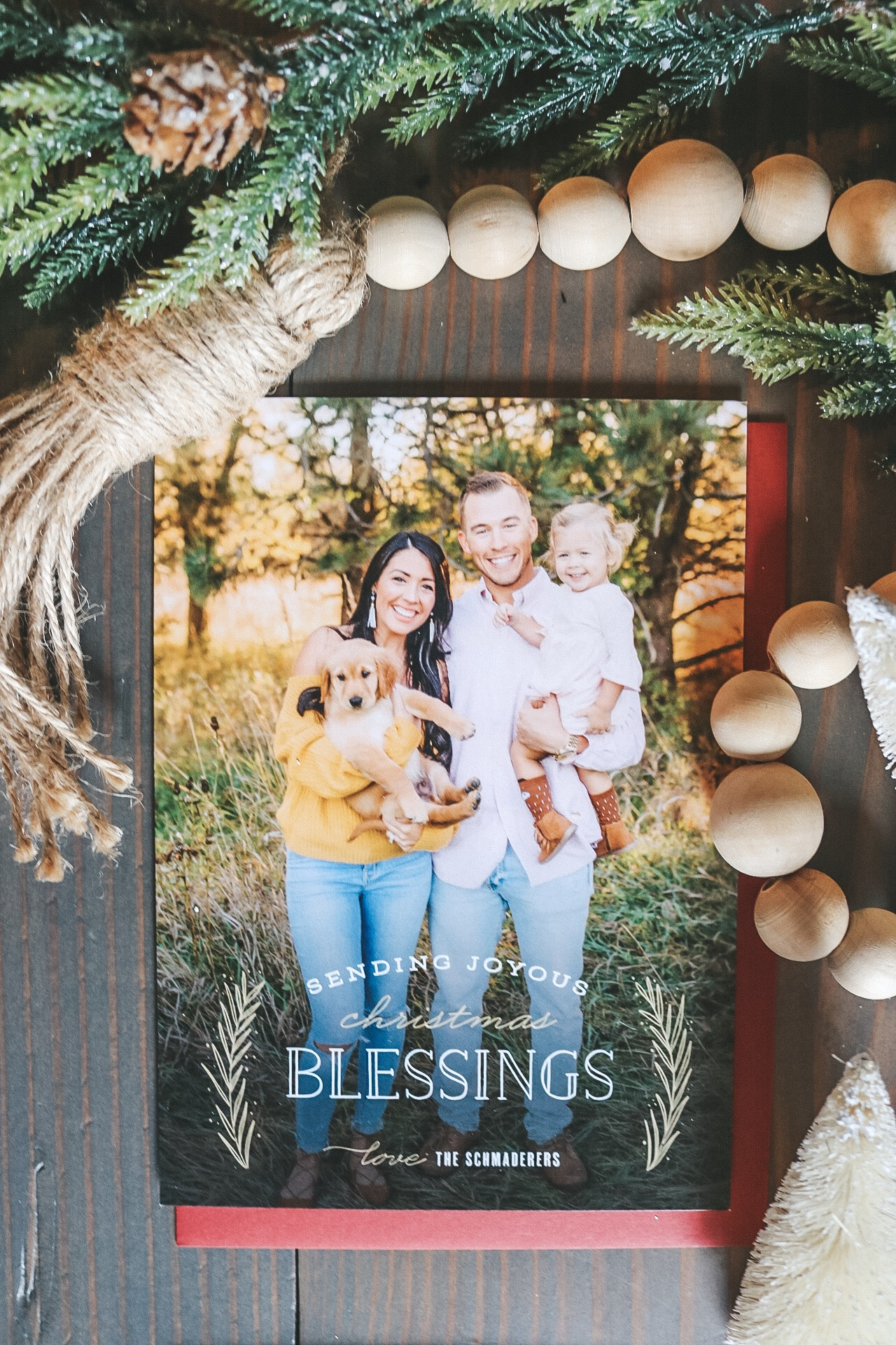 christmas cards by basic invite
